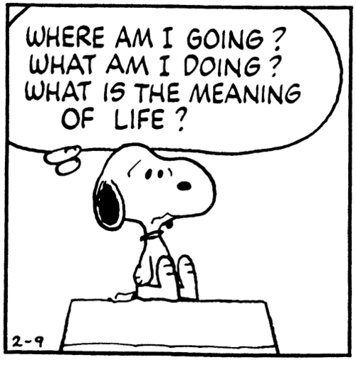 Meaning snoopy