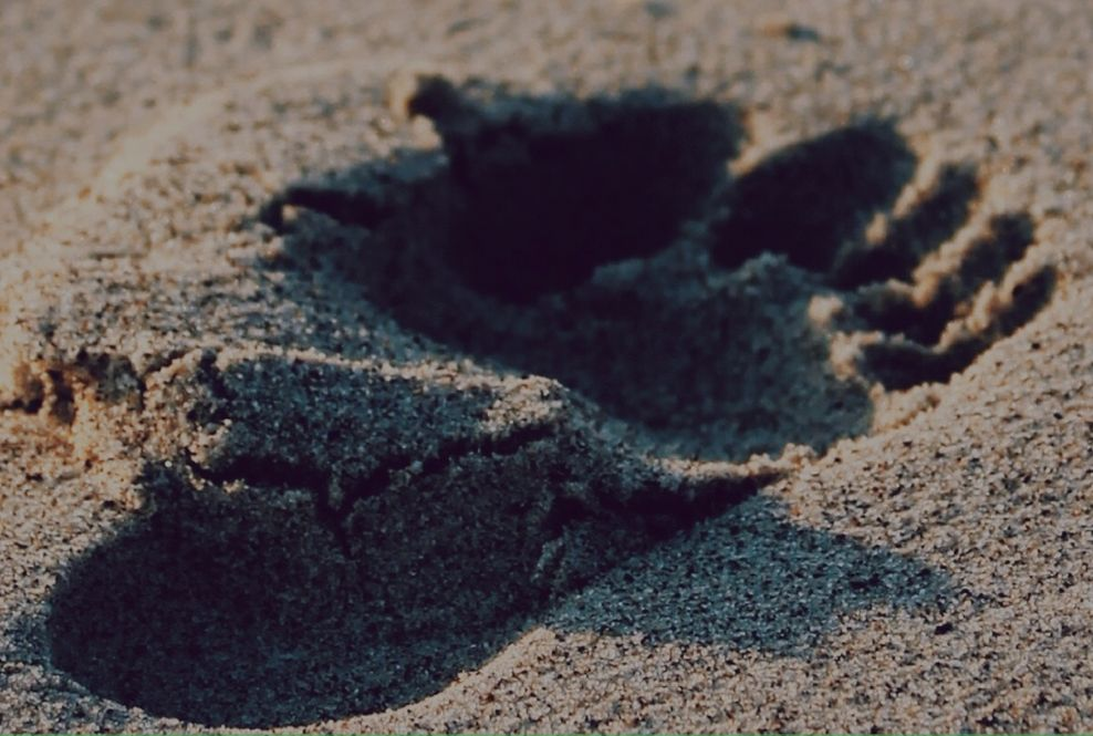 step in sand
