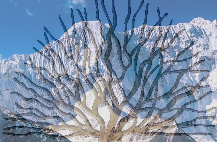 mountain-tree